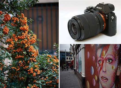 sony fe  mm   oss sample images photography blog