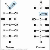 basic-nucleotide-structure