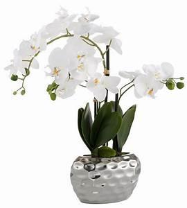 Künstliche Orchideen Im Topf : home affaire kunstblume orchidee 55 cm kaufen otto ~ Watch28wear.com Haus und Dekorationen