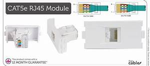 Cat5e Rj45 Socket Module  Modular Wall Face Plate Outlet