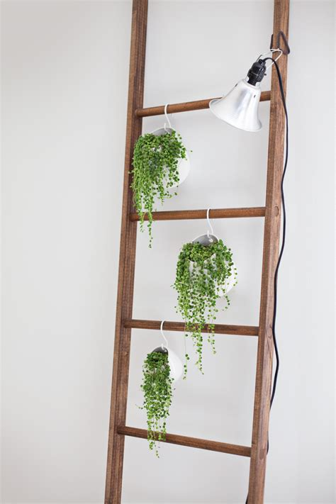 decorative ladder ideas repurposed ladder decor ideas that you will love