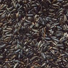 Prambanan Maw Seeds 2kg niger seed nyjer seed garden feathers bird supplies