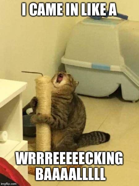 Wrecking Ball Memes - microphone cat wrecking ball imgflip