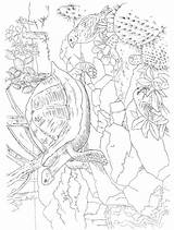 Paradise Pages Tropical Scenes Coloring Adult Dover Publications Paint Doverpublications Colouring Printable Books Animals Doddle sketch template