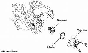 Toyota 4runner 1996-2002 How To Replace Thermostat