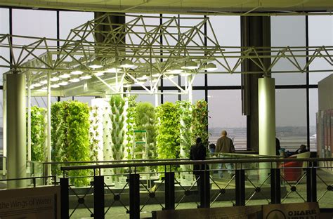 Vertical Garden Chicago by O Hare S Garden Around And About With