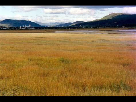 bureau hello fond d 39 ecran paysage plaine et prairie wallpaper
