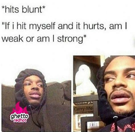 Hit The Blunt Memes - 14 best blunt talk images on pinterest ha ha funny photos and funniest pictures