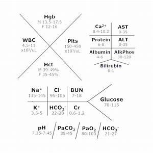 Diagram  Cbc Lab Diagram Full Version Hd Quality Lab