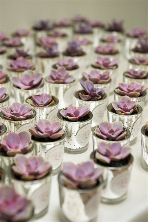 wedding place card table we mini succulent favors by blossom