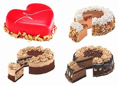 Cream Ice Cakes Point Havmor Chocolate Nutty