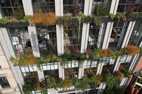 Vertical Gardens Nyc by The Flowerbox Building A Sustainable Gem In A Storied