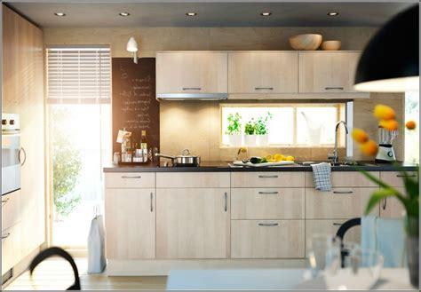 Ikea Espresso Kitchen Cabinets by Ikea Birch Kitchen Cabinets 2016 Kitchen Ideas To Show