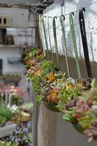 unique, flower, planters, that, will, beautify, your, garden