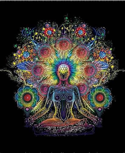 Meditation Yoga Spiritual Musik Mind Exercise Guided