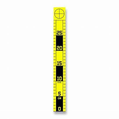 Vertical Ruler 30cm Metric Left Right Sided