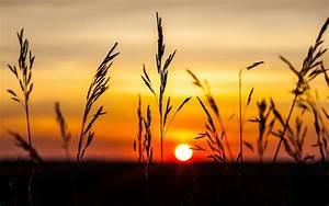 Nature, Landscape, Sunset, Wallpapers, Hd, Desktop, And