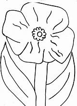 Poppy Coloring Flower California Pages Clipart Blossom Library Popular Line Colorluna sketch template