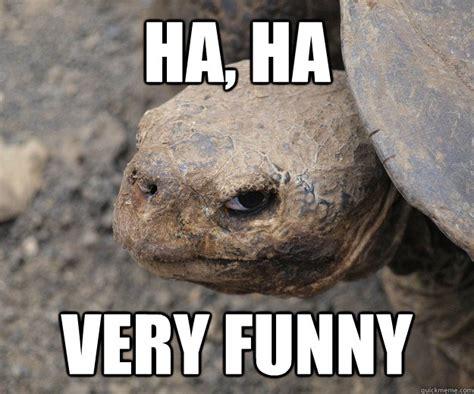 Ha Ha Meme - ha ha very funny