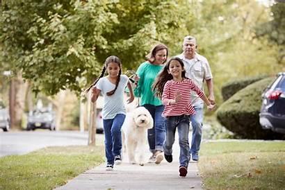 Walking Dog Active Diabetes Med