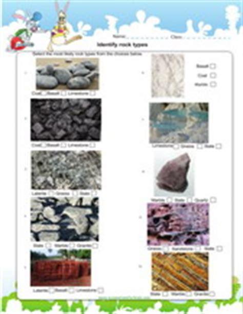 2nd grade science worksheets for practice pdf