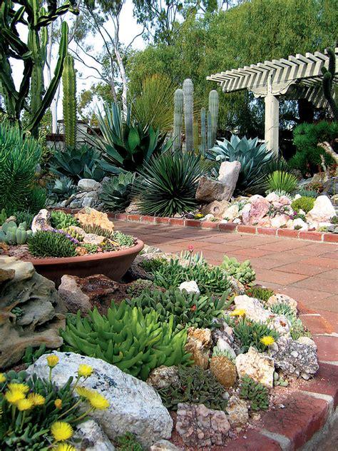 succulent rock garden on