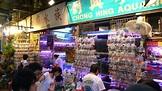 金魚街Gold Fish Market / Hong Kong@Lifestyle - a photo on Flickriver