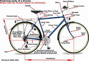 Much Madness Is Divinest Sense  Anatomy Of A Bicyle