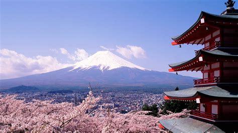 cherry blossoms  mount fuji landscape photography