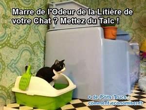 Litiere Chat Sans Odeur : marre de l 39 odeur de la liti re de votre chat mettez du ~ Melissatoandfro.com Idées de Décoration