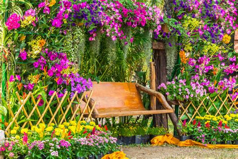 40 Colorful Garden Ideas (color Explosion