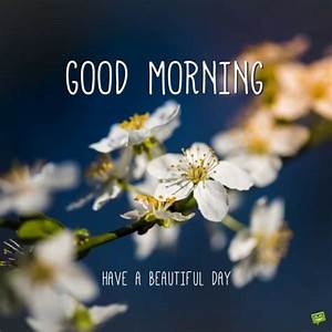 Have a Beautiful Day | Good Morning Quotes on Pictures