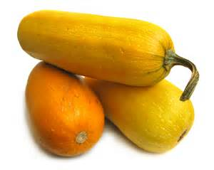 Types of Yellow Summer Squash Varieties