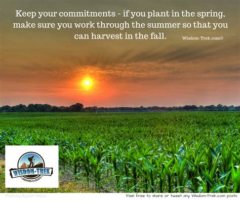 what can you plant in the fall what can you plant in the fall 28 images plan before you plant fall bulbs enjoy carefree