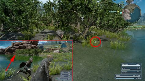 ffxv   find  red yellow rainbow frogs