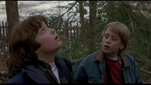 The Good Son (1993)   AwesomeBMovies.com