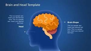 Human Head And Brain Shape Slide