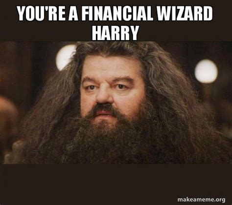 You Re A Wizard Harry Meme - you re a financial wizard harry hagrid i should not have said that make a meme