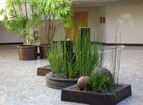 amazing and contemporary indoor plant decoration ideas