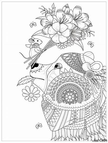 Coloring Bear Pages Bears Adults Mouse Flowers