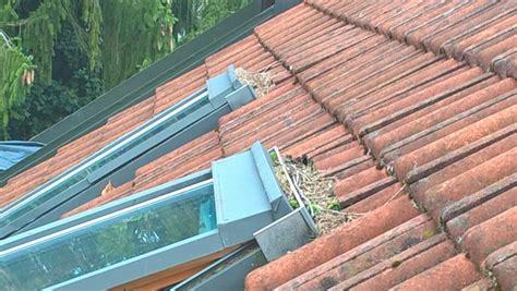 dachausbau ohne baugenehmigung strafe velux dachbalkon baugenehmigung ein dachbalkon bringt licht luft in das heim vom fenster zum