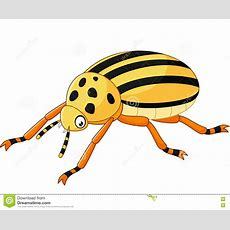 Cartoon Beetle Isolated On White Background Stock Vector  Image 72529591
