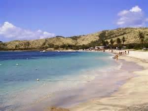 Bay St. Kitts Cockleshell Beach