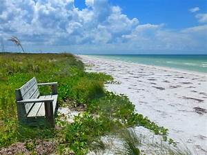 palm harbor fl beach information With honeymoon state park florida