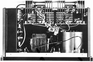 Human Speakers  Epicure M1 Power Amplifier