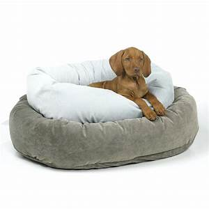 dog chews a bone puppy lying on a bed and chewing a large With dog chews up bed