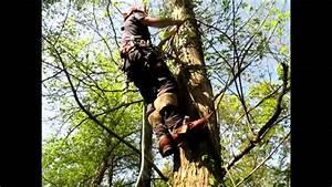 Griffe Elagage Pas Cher : le grimper alternatif sur griffes youtube ~ Nature-et-papiers.com Idées de Décoration
