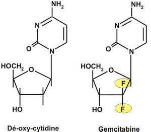 These two different mechanisms result in the total inhibition of DNA ...  Bladder Cancer Gemcitabine