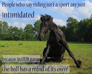 Horse Riding Is... Horse Owning Quotes