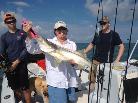 snook captiva sanibel charters caught huge fishing lots monday being july